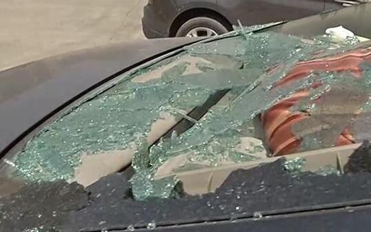 甲鱼跳下26楼砸车 汽车后挡风玻璃全部碎了