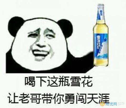 互联网10大热词排行榜_2017十大网络新梗流行词