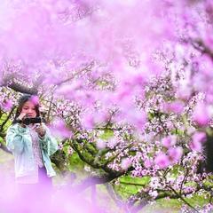 宁德屏南:清明踏春