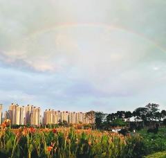 漳州台商投资区:城市建设中注重生态环境保护