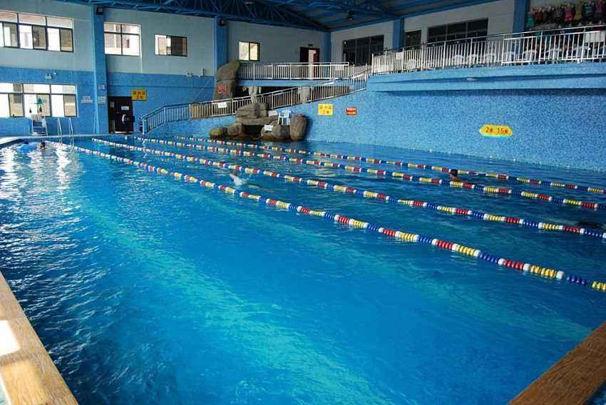 终于可以畅游啦!厦门部分游泳馆7日重新开放